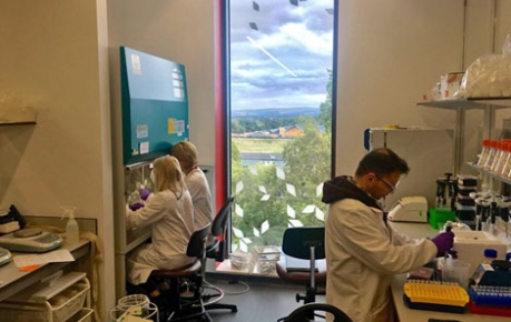 photo of Ingenza staff working lab at Roslin Innovation Centre with a view over Easter Bush Campus