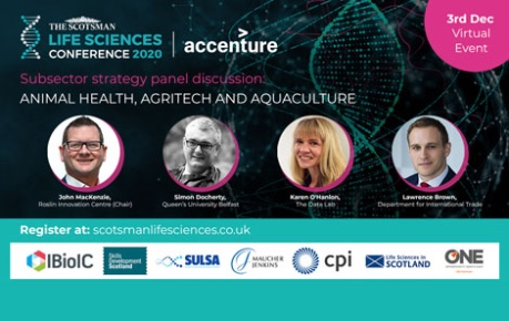 Scotsman Life Sciences Conference 2020 - panel discussion team on Animal Health, Agritech, Aquaculture